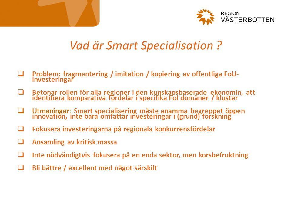 Vad är Smart Specialisation .