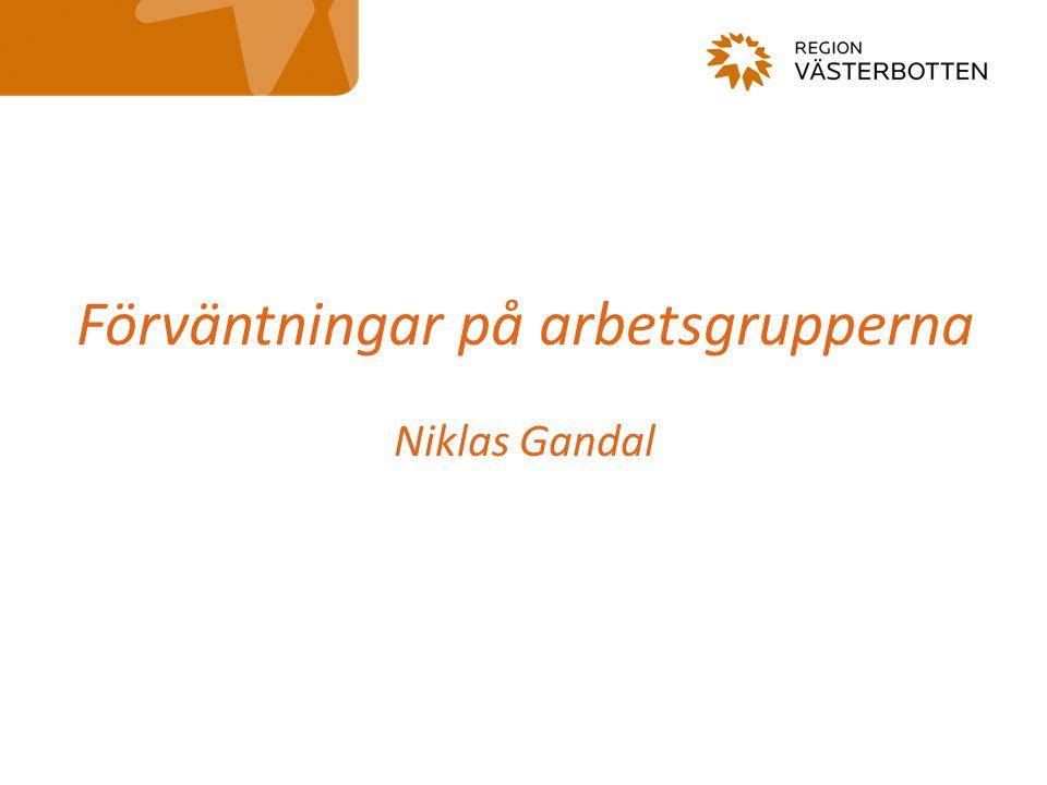 Förväntningar på arbetsgrupperna Niklas Gandal