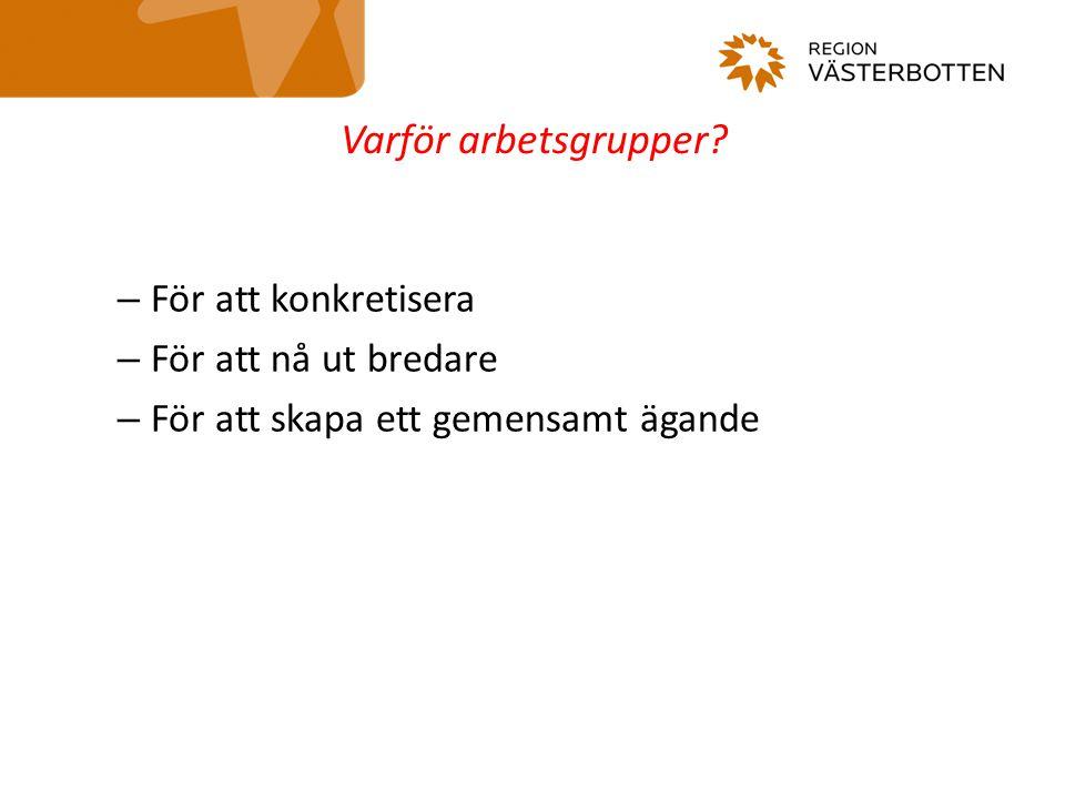 Förslag till prioriteringar och insatser Kunskap från andra arbetsgrupper Kunskap från aktörer utanför arbetsgrupperna Gruppmedlemmarnas kunskap