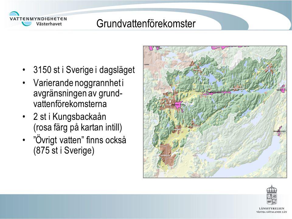 Grundvattenförekomster 3150 st i Sverige i dagsläget Varierande noggrannhet i avgränsningen av grund- vattenförekomsterna 2 st i Kungsbackaån (rosa färg på kartan intill) Övrigt vatten finns också (875 st i Sverige)