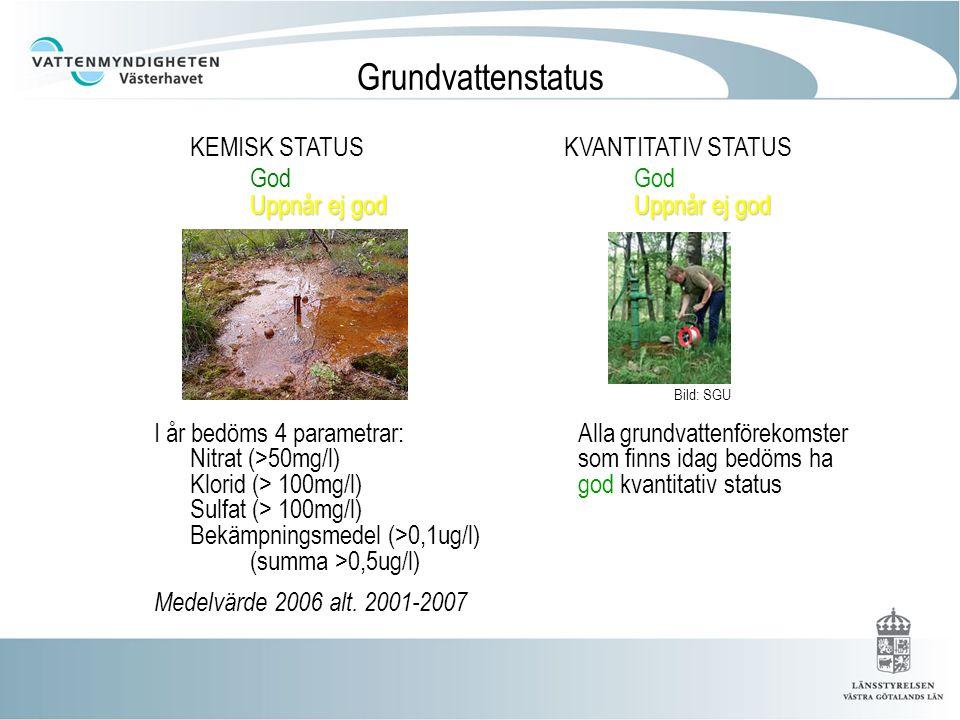 Sammanvägning (Kemisk status) Få riktlinjer finns One out – all out gäller Något oklart hur man ska gå tillväga om en eller flera kvalitetsfaktorer saknas NitratSulfat Klorid Bek.