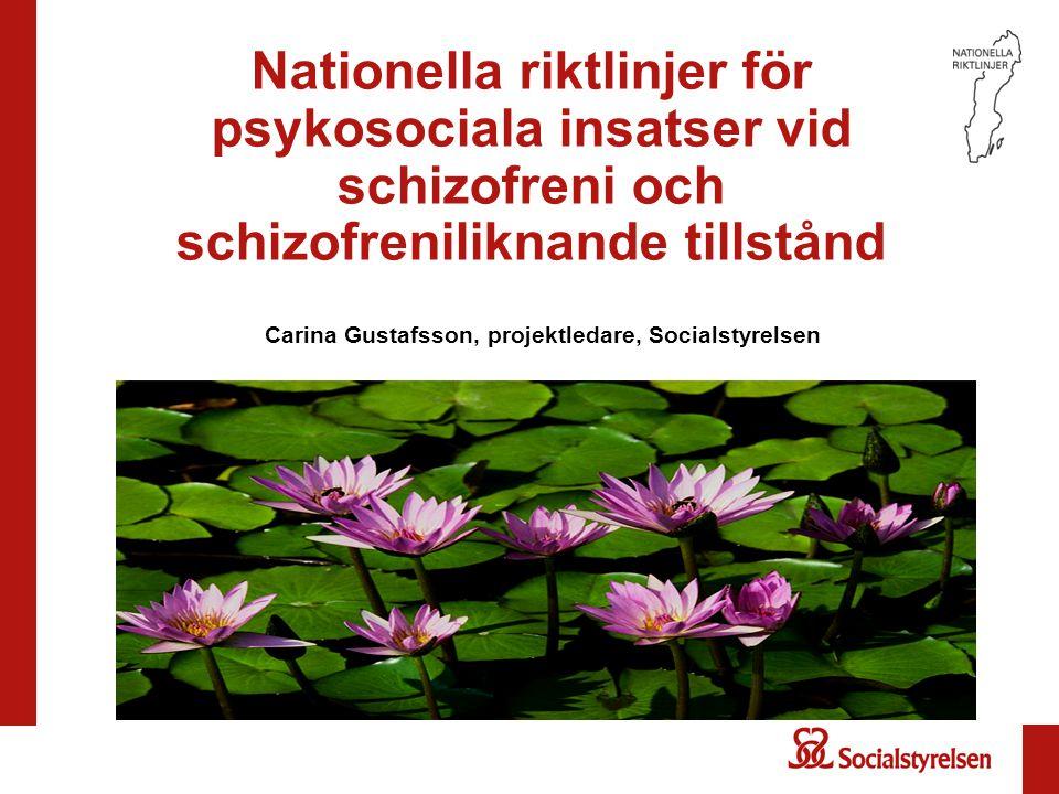 Nationella riktlinjer för psykosociala insatser vid schizofreni och schizofreniliknande tillstånd Carina Gustafsson, projektledare, Socialstyrelsen