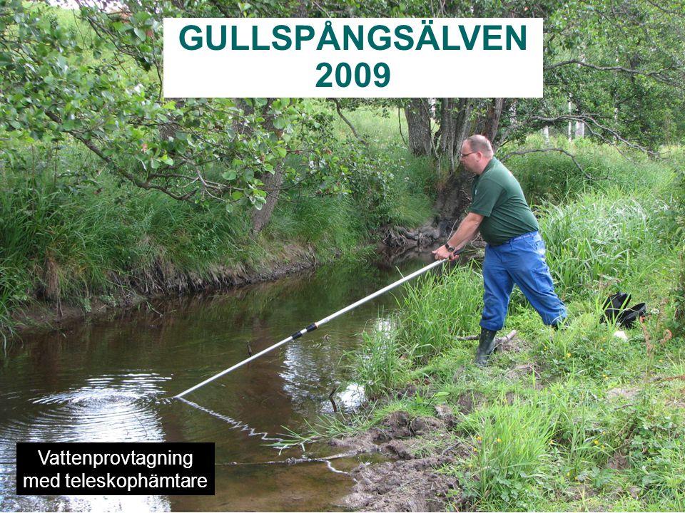GULLSPÅNGSÄLVEN 2009 Vattenprovtagning med teleskophämtare