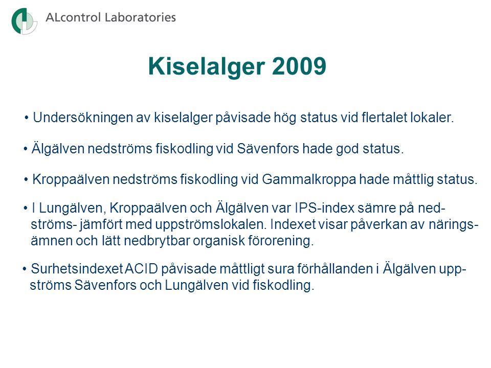 Kiselalger 2009 Undersökningen av kiselalger påvisade hög status vid flertalet lokaler.