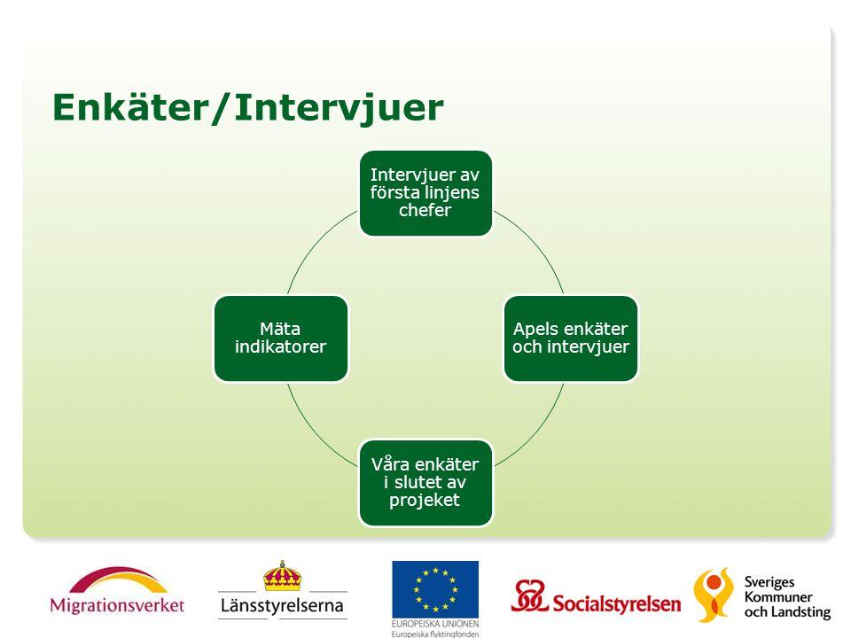 Enkäter/Intervjuer Intervjuer av första linjens chefer Apels enkäter och intervjuer Våra enkäter i slutet av projeket Mäta indikatorer