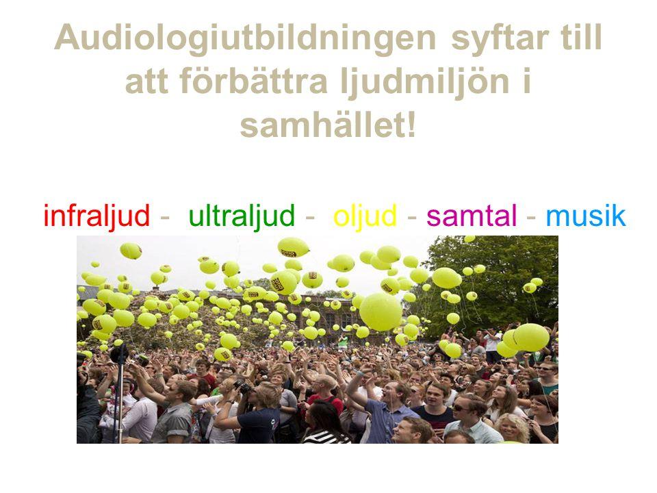 Audiologiutbildningen syftar till att förbättra ljudmiljön i samhället.