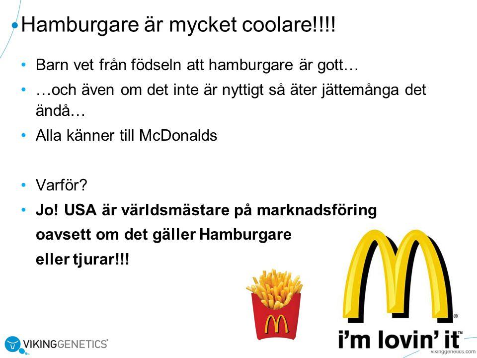 Hamburgare är mycket coolare!!!.