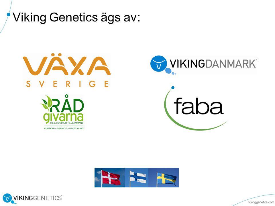 I Viking Genetics kan du som lantbrukare vara med att påverka Avelsmålet!.