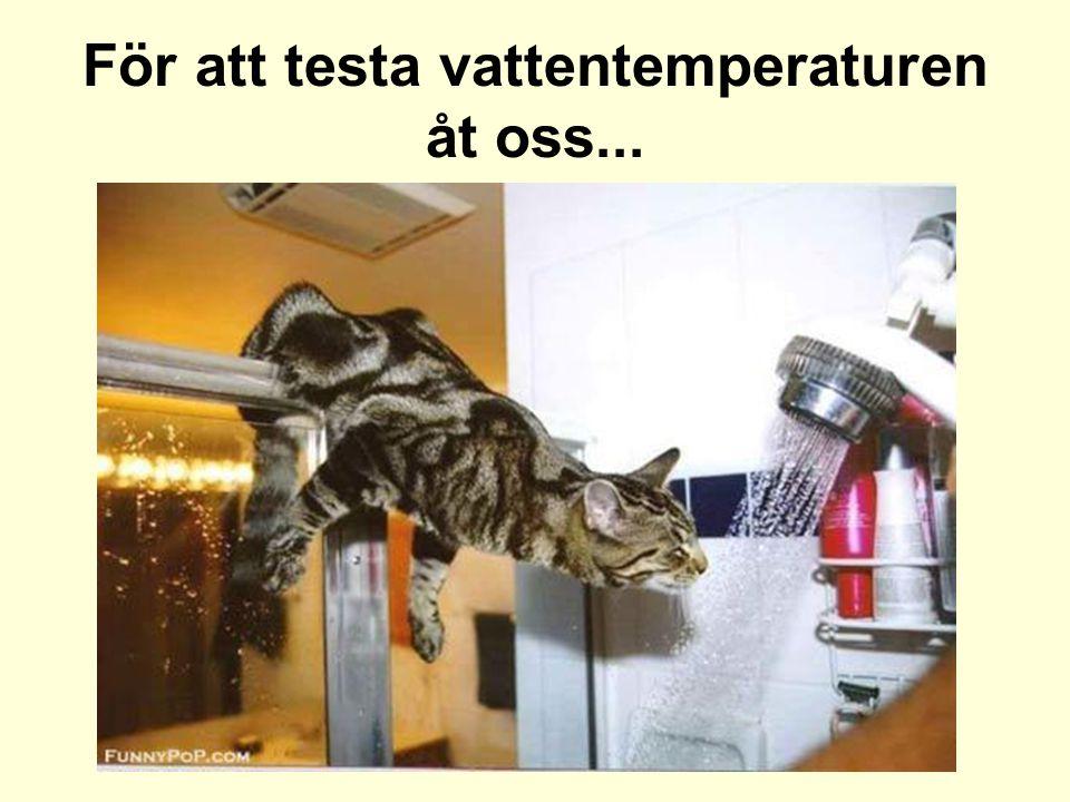 För att testa vattentemperaturen åt oss...