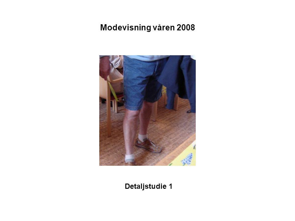 Modevisning våren 2008 Detaljstudie 1