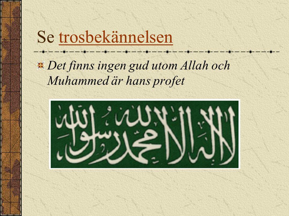 Se trosbekännelsentrosbekännelsen Det finns ingen gud utom Allah och Muhammed är hans profet