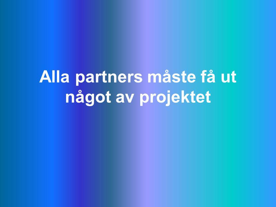 Alla partners måste få ut något av projektet