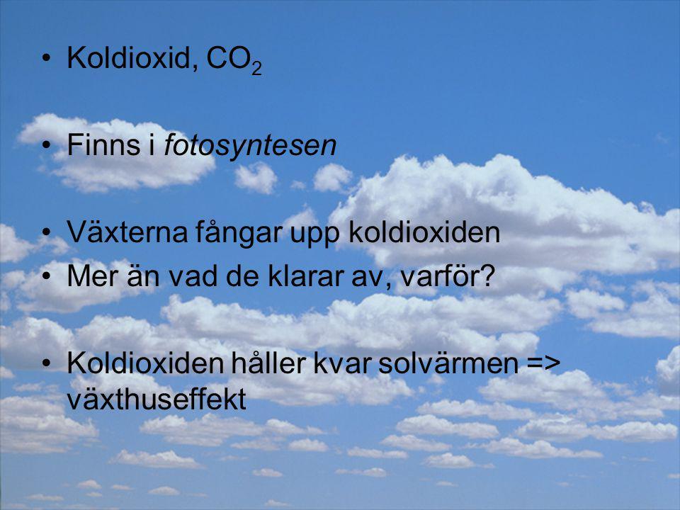 Koldioxid, CO 2 Finns i fotosyntesen Växterna fångar upp koldioxiden Mer än vad de klarar av, varför? Koldioxiden håller kvar solvärmen => växthuseffe