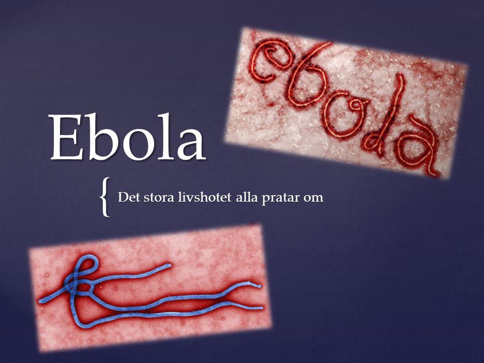 { Ebola Det stora livshotet alla pratar om