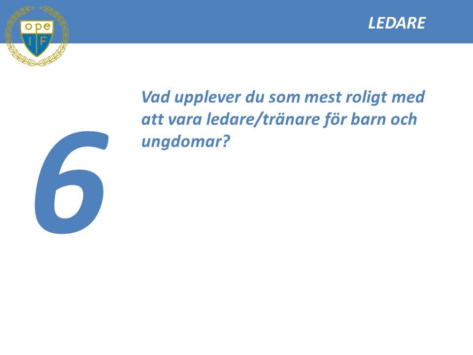 LEDARE 6 Vad upplever du som mest roligt med att vara ledare/tränare för barn och ungdomar?