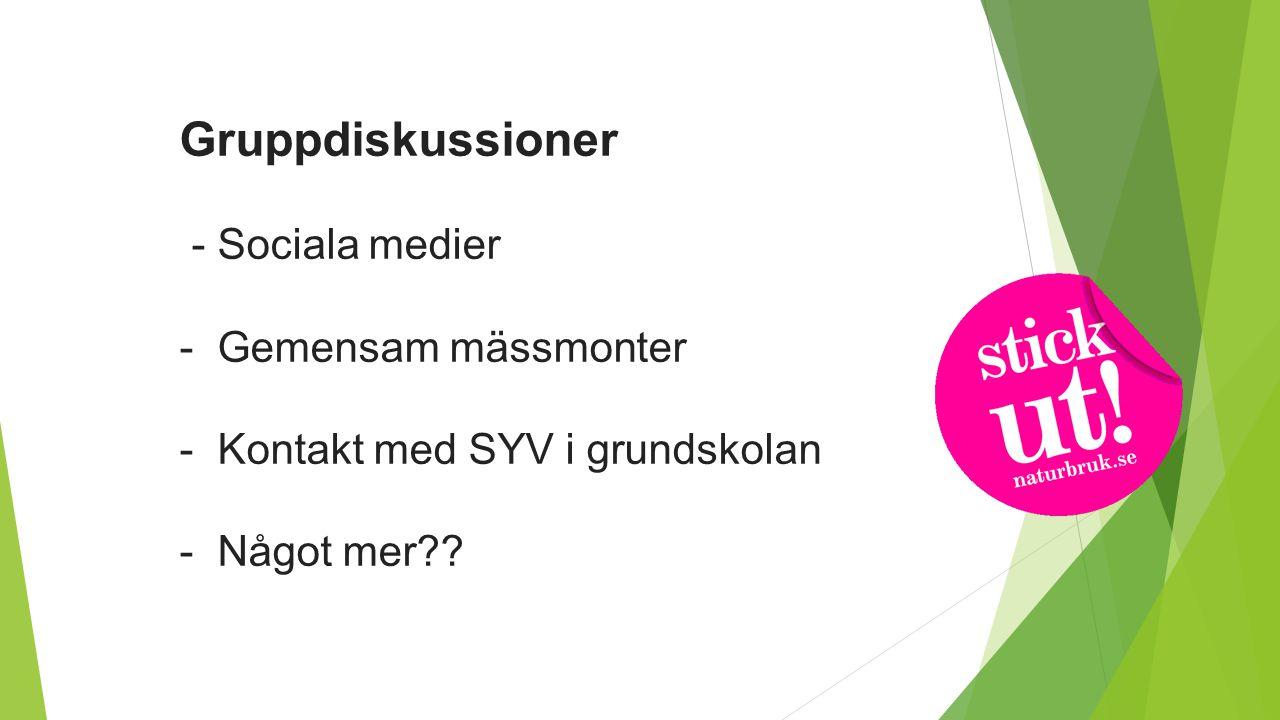 Gruppdiskussioner - Sociala medier - Gemensam mässmonter - Kontakt med SYV i grundskolan - Något mer