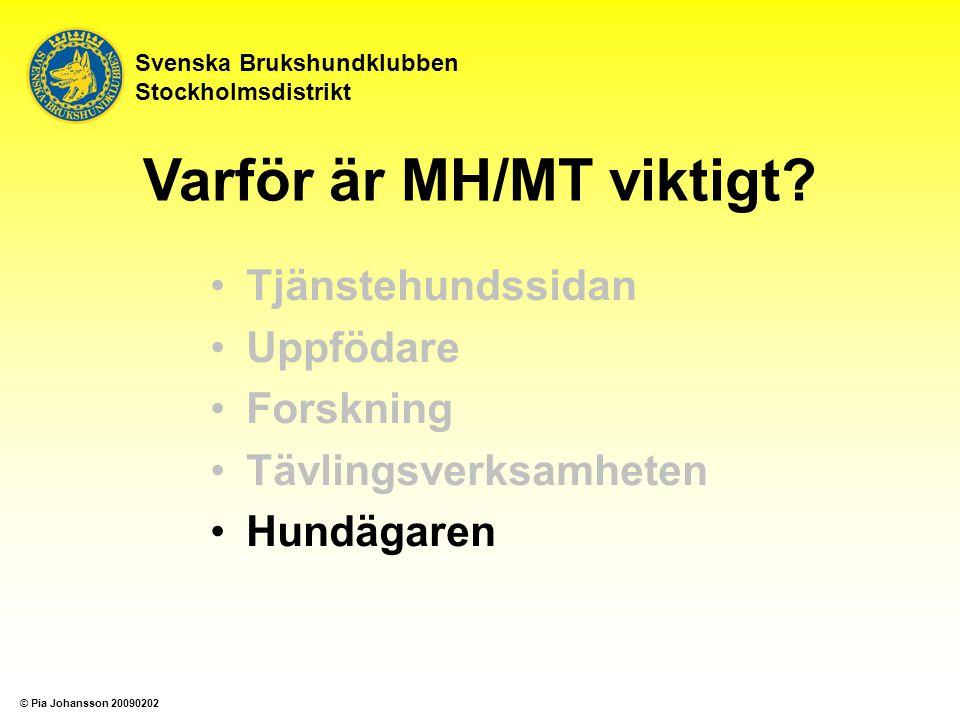 Tjänstehundssidan Uppfödare Forskning Tävlingsverksamheten Hundägaren Svenska Brukshundklubben Stockholmsdistrikt Varför är MH/MT viktigt.