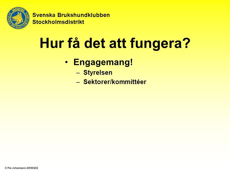 Engagemang! –Styrelsen –Sektorer/kommittéer Svenska Brukshundklubben Stockholmsdistrikt Hur få det att fungera? © Pia Johansson 20090202