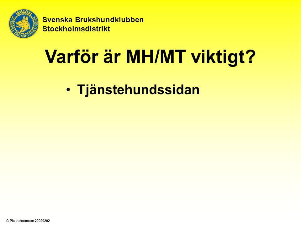Tjänstehundssidan Uppfödare Svenska Brukshundklubben Stockholmsdistrikt Varför är MH/MT viktigt.