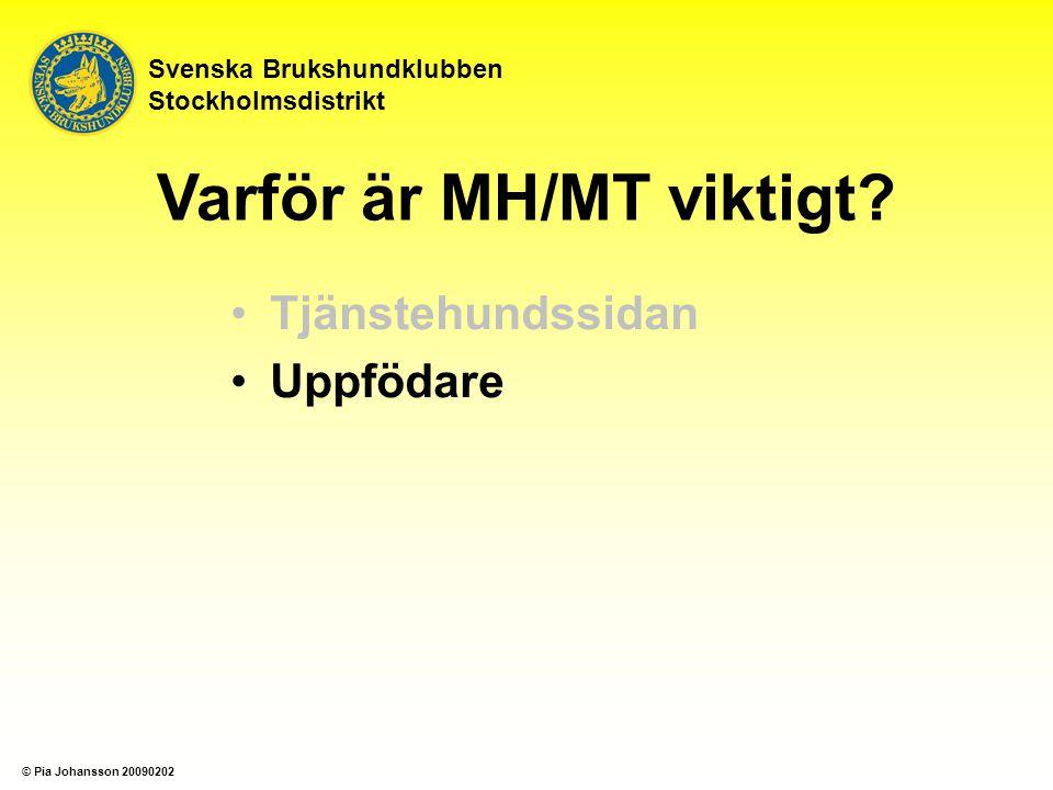 Tjänstehundssidan Uppfödare Svenska Brukshundklubben Stockholmsdistrikt Varför är MH/MT viktigt? © Pia Johansson 20090202