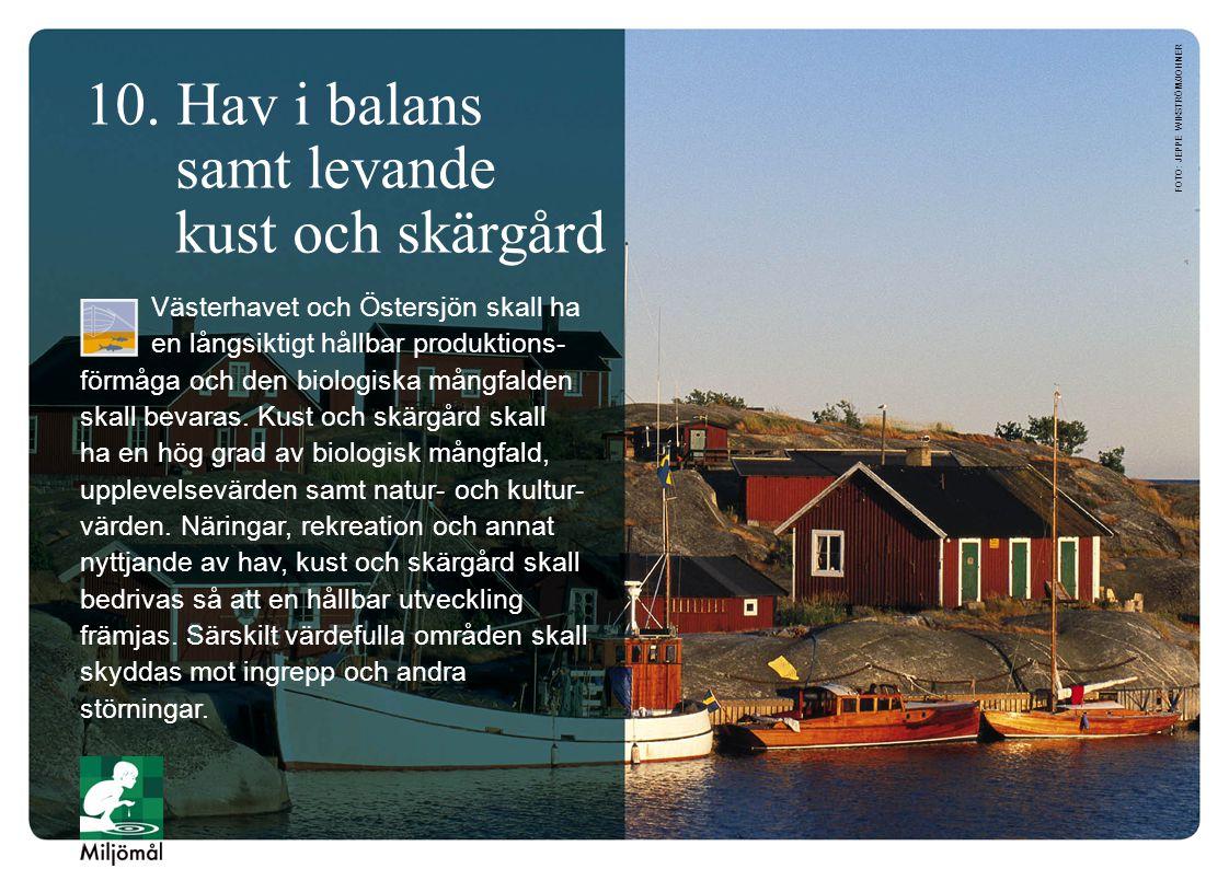 10. Hav i balans samt levande kust och skärgård Västerhavet och Östersjön skall ha en långsiktigt hållbar produktions- förmåga och den biologiska mång