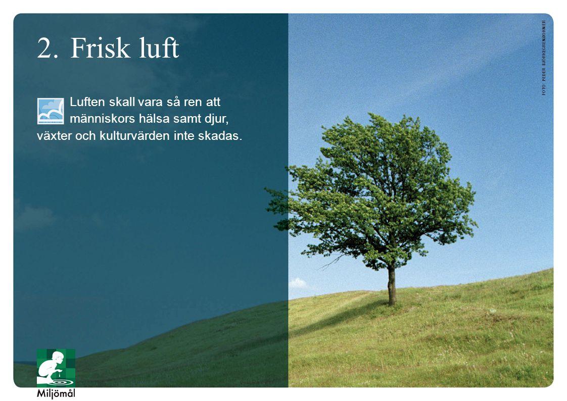 2.Frisk luft Luften skall vara så ren att människors hälsa samt djur, växter och kulturvärden inte skadas. FOTO: PEDER BJÖRKEGREN/JOHNER