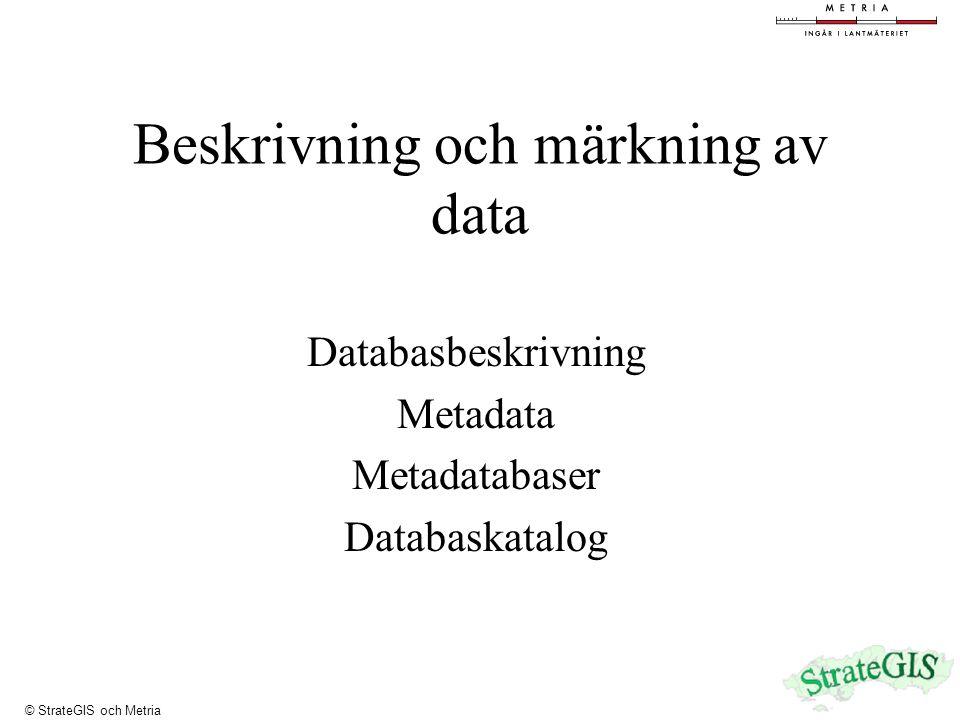 Beskrivning och märkning av data Databasbeskrivning Metadata Metadatabaser Databaskatalog © StrateGIS och Metria