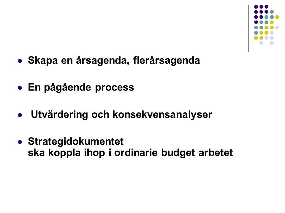 Skapa en årsagenda, flerårsagenda En pågående process Utvärdering och konsekvensanalyser Strategidokumentet ska koppla ihop i ordinarie budget arbetet