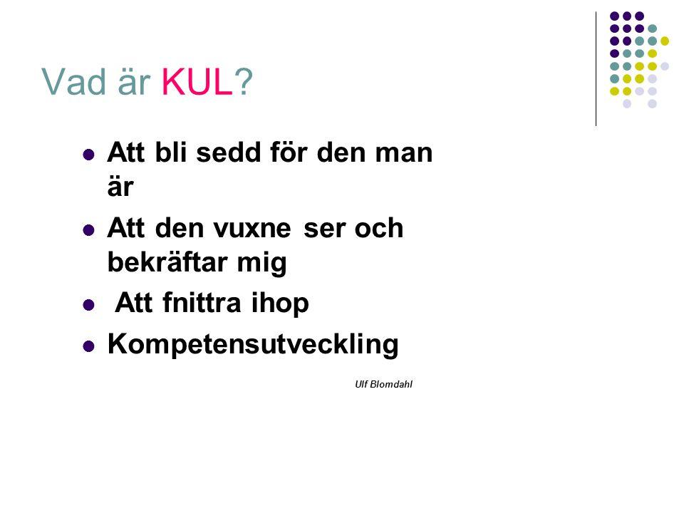 Vad är KUL? Att bli sedd för den man är Att den vuxne ser och bekräftar mig Att fnittra ihop Kompetensutveckling Ulf Blomdahl
