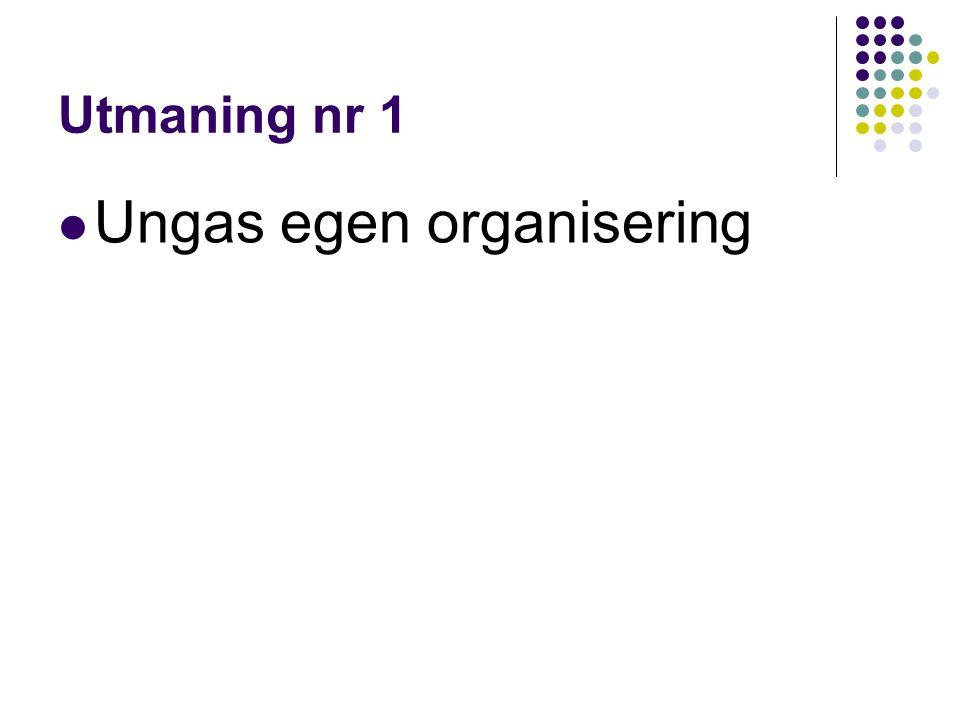 Utmaning nr 1 Ungas egen organisering