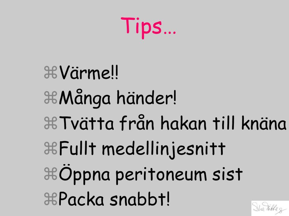 Tips… zVärme!! zMånga händer! zTvätta från hakan till knäna zFullt medellinjesnitt zÖppna peritoneum sist zPacka snabbt!