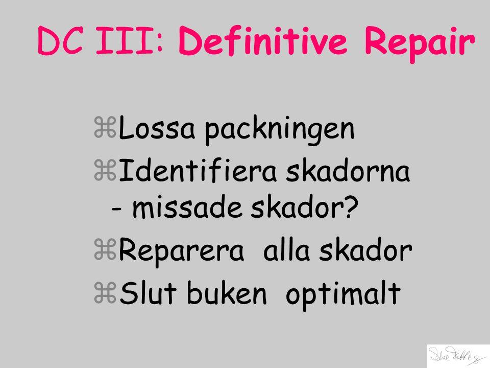 DC III: Definitive Repair zLossa packningen zIdentifiera skadorna - missade skador? zReparera alla skador zSlut buken optimalt