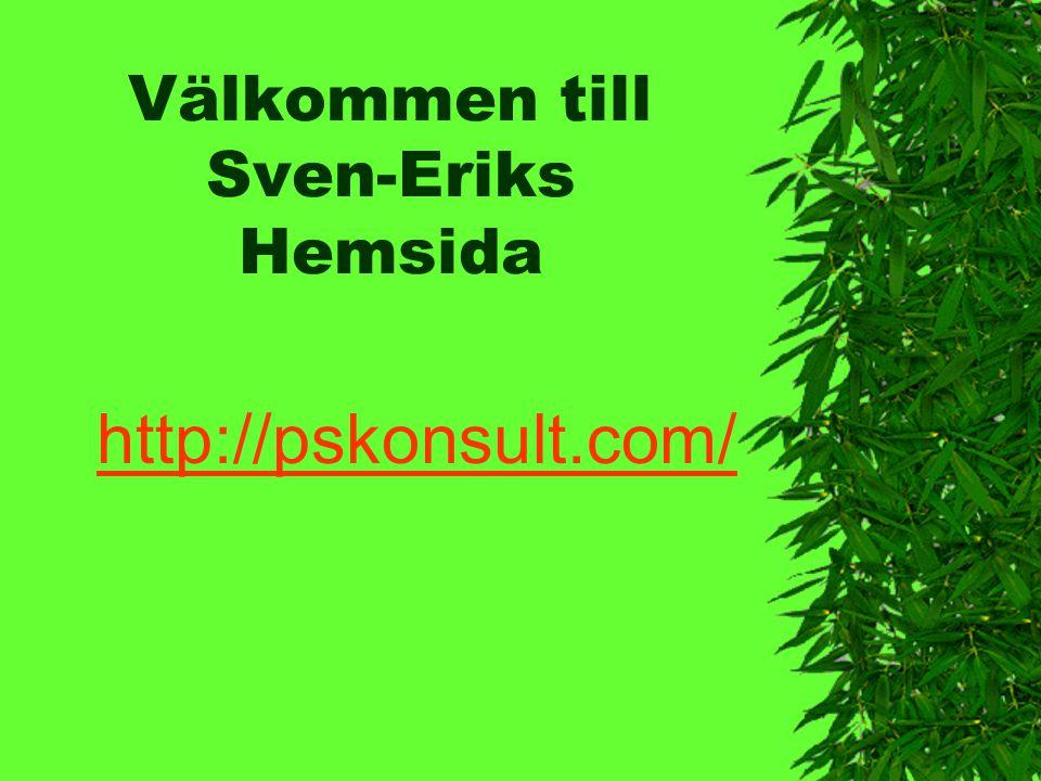 Välkommen till Sven-Eriks Hemsida http://pskonsult.com/