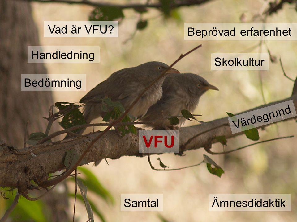 VFU Vad är VFU.