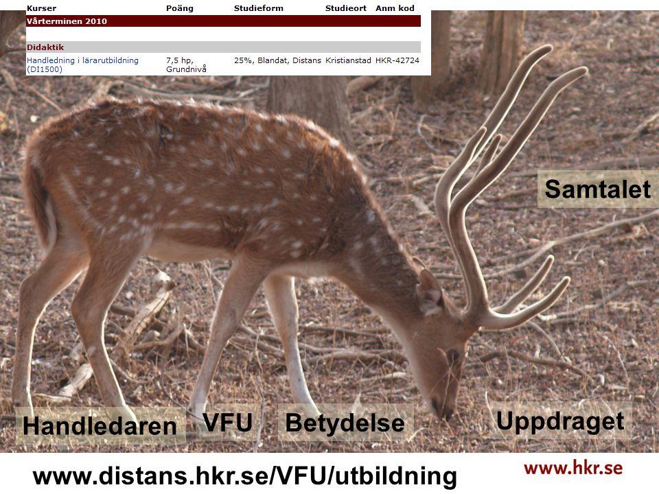 Handledaren VFUBetydelse Uppdraget Samtalet www.distans.hkr.se/VFU/utbildning