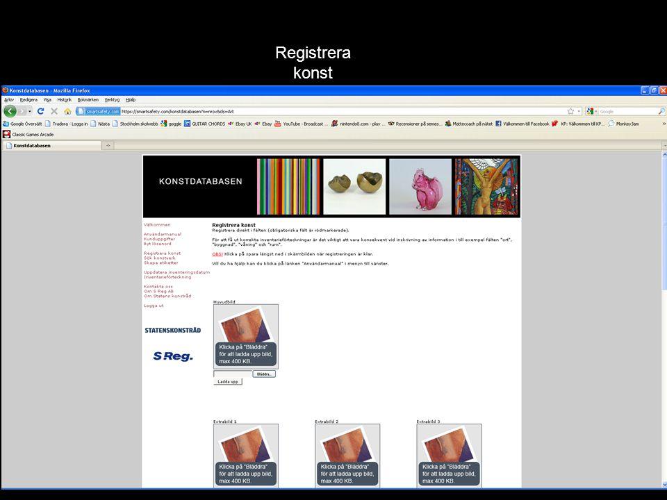 Registrera uppgifter om konstverket, konstverkets placering och eventuella skador etc.