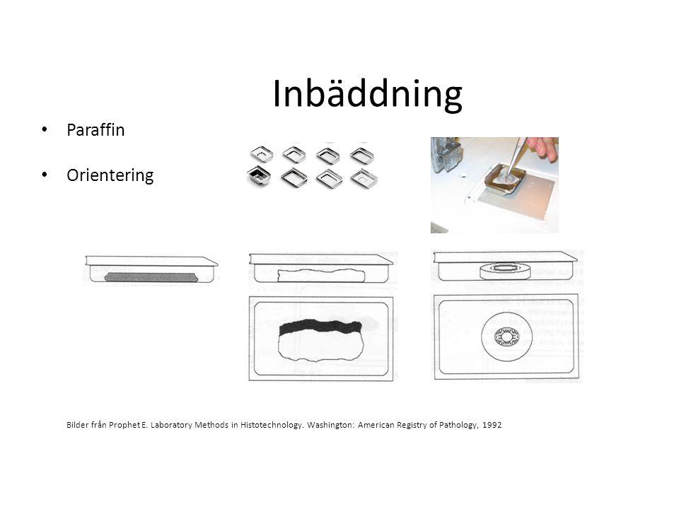 Inbäddning Paraffin Orientering Bilder från Prophet E. Laboratory Methods in Histotechnology. Washington: American Registry of Pathology, 1992
