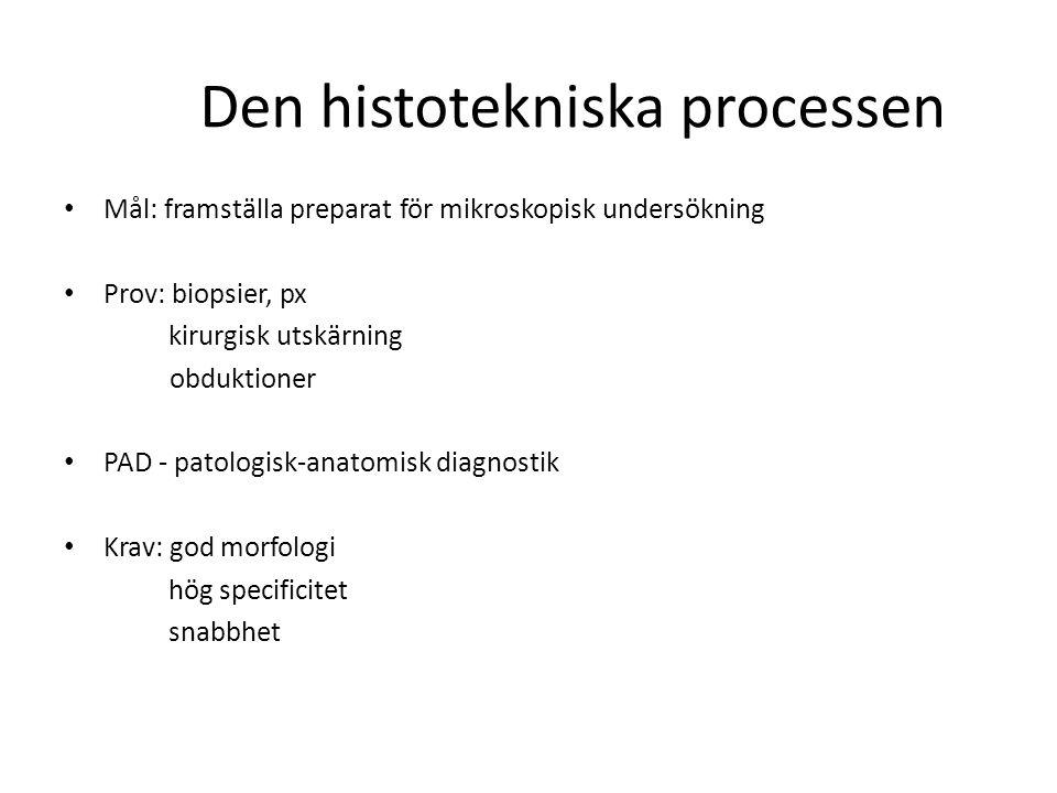 Den histotekniska processen Mål: framställa preparat för mikroskopisk undersökning Prov: biopsier, px kirurgisk utskärning obduktioner PAD - patologis