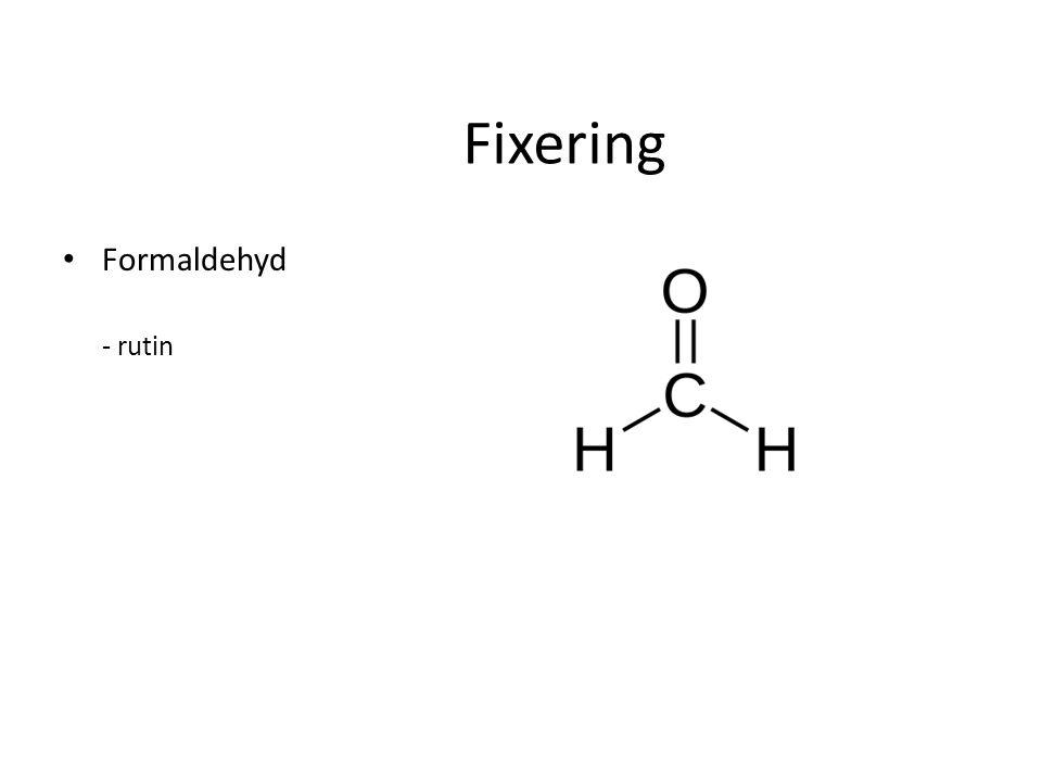 Fixering Formaldehyd - rutin