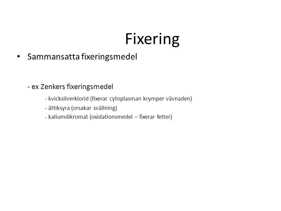 Fixering Sammansatta fixeringsmedel - ex Zenkers fixeringsmedel - kvicksilverklorid (fixerar cytoplasman krymper vävnaden) - ättiksyra (orsakar svälln