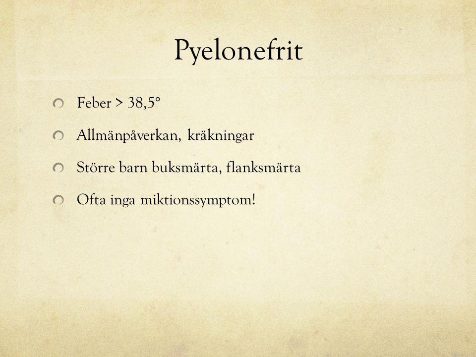 Pyelonefrit Feber > 38,5° Allmänpåverkan, kräkningar Större barn buksmärta, flanksmärta Ofta inga miktionssymptom!