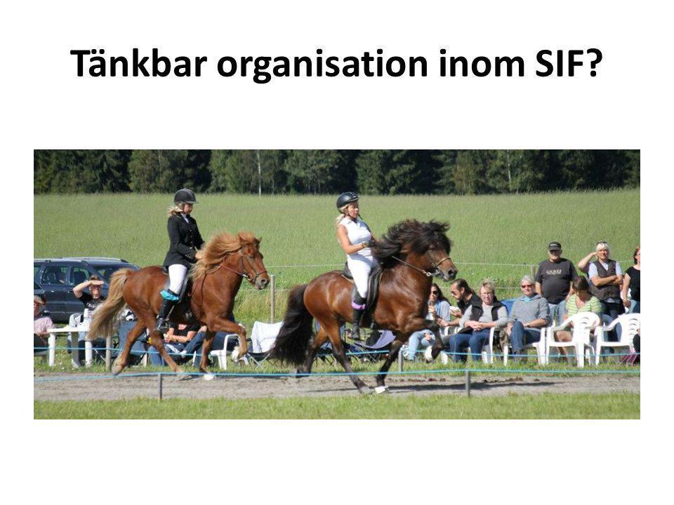 Tänkbar organisation inom SIF?