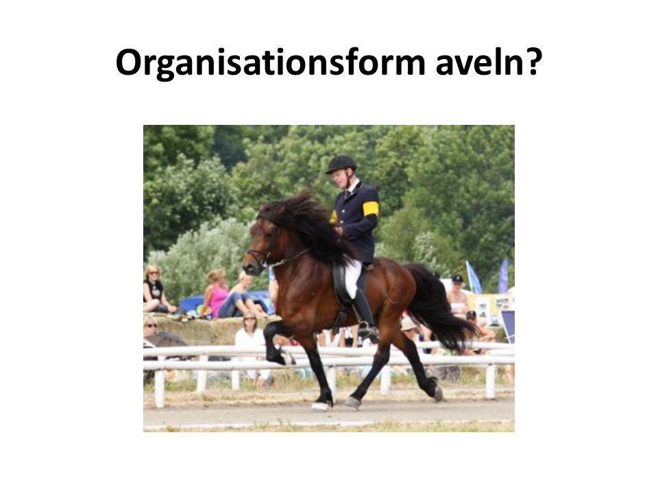 Organisationsform aveln