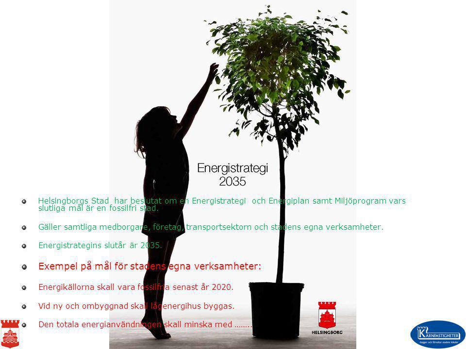 År 2010 skall energianvändningen ha minskat med 10% År 2020 skall energianvändningen ha minskat med 20% År 2035 skall energianvändningen ha minskat med 30 % Basår 2005.
