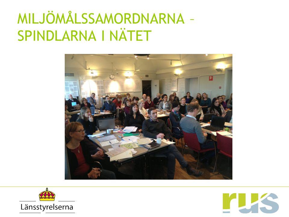 20122013 REGIONALA ÅTGÄRDSPROGRAM