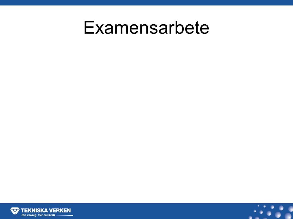 Examensarbete
