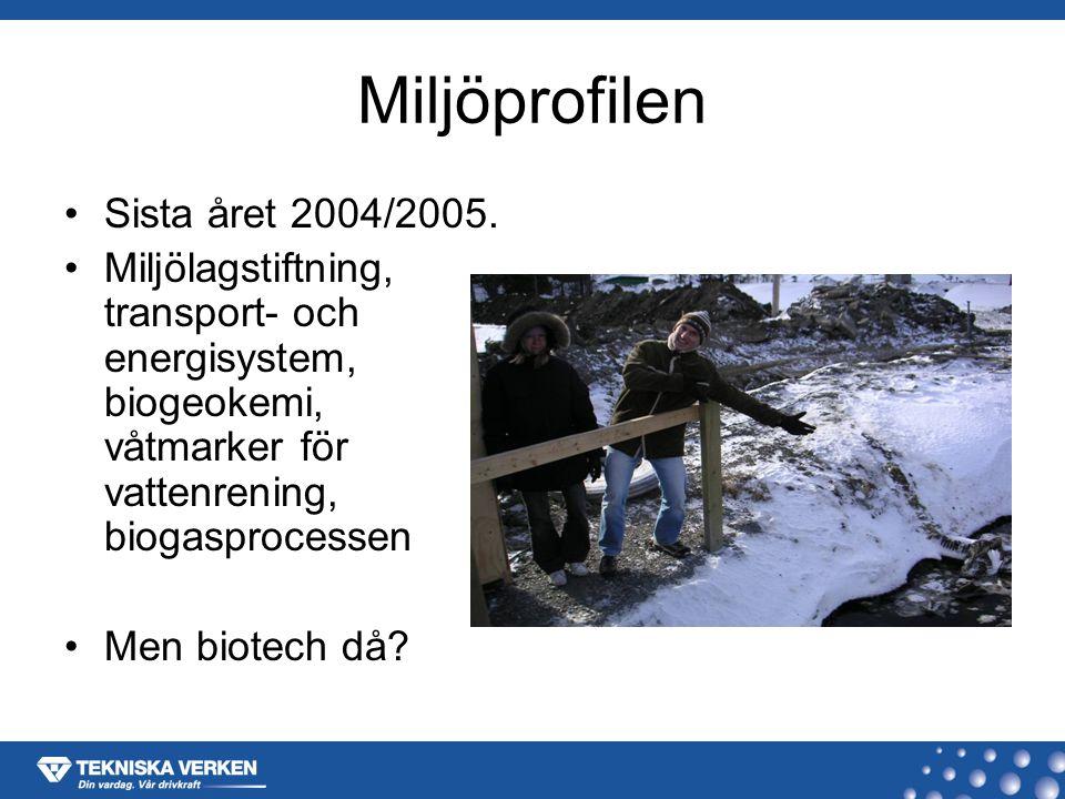 Högbytorp 2004-03-03