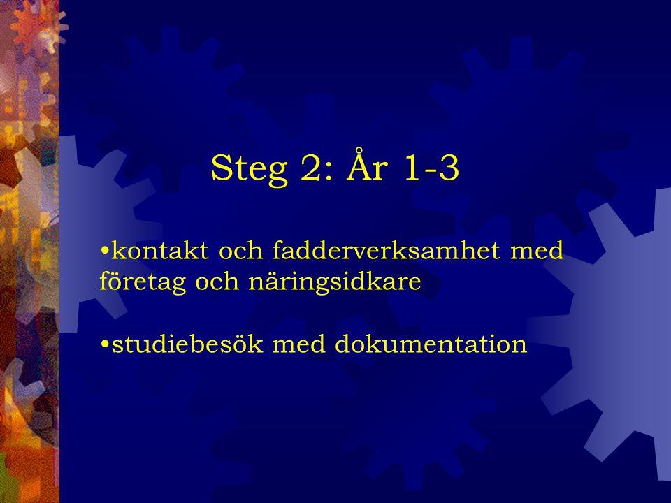 Steg 2: År 1-3 kontakt och fadderverksamhet med företag och näringsidkare studiebesök med dokumentation