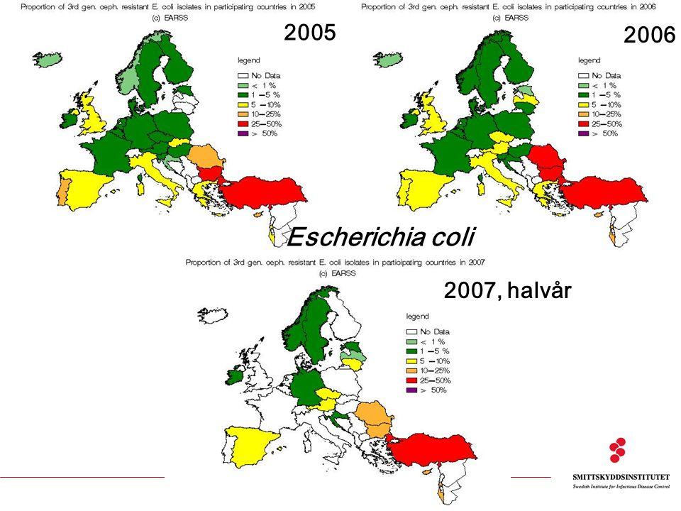 2005 2006 2007, halvår Escherichia coli