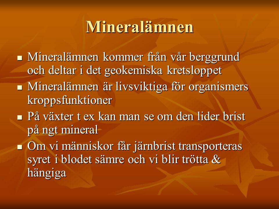 Mineralämnen Mineralämnen kommer från vår berggrund och deltar i det geokemiska kretsloppet Mineralämnen kommer från vår berggrund och deltar i det ge